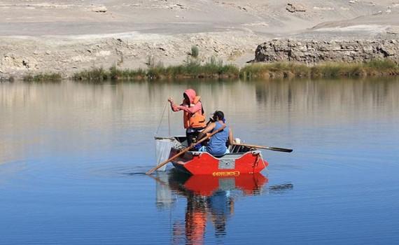 Descubren microorganismos altamente resistentes a los metales pesados en laguna altiplánica