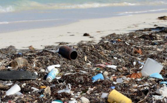Acciones prácticas para ayudar a descontaminar el mar