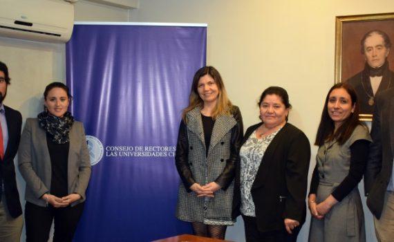 Red UPS se reúne con dirección académica del CRUCH