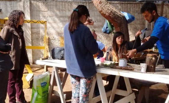 Exitoso taller de suculentas en Coquimbo