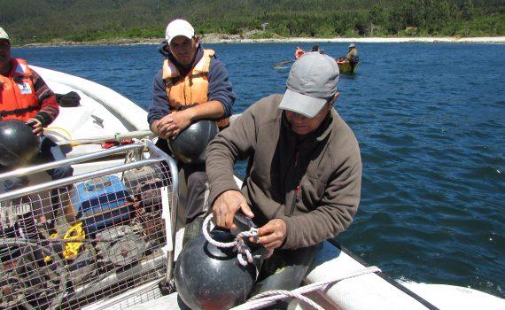 Pescadores artesanales de la región de Los Ríos aprenden técnicas de cultivo de sus pares nortinos
