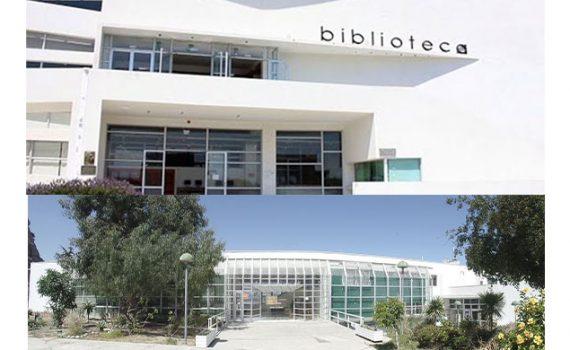 Bibliotecas UCN invitan a jornadas de capacitación en herramientas de búsqueda